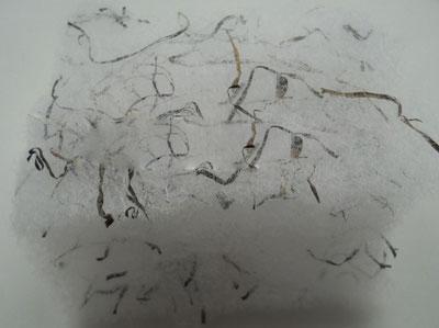 Наполнитель с водорослями