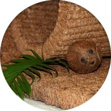 Как выбрать кокосовый ортопедический матрас - фото