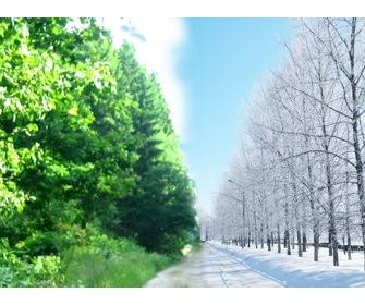 Матрас зима-лето - фото